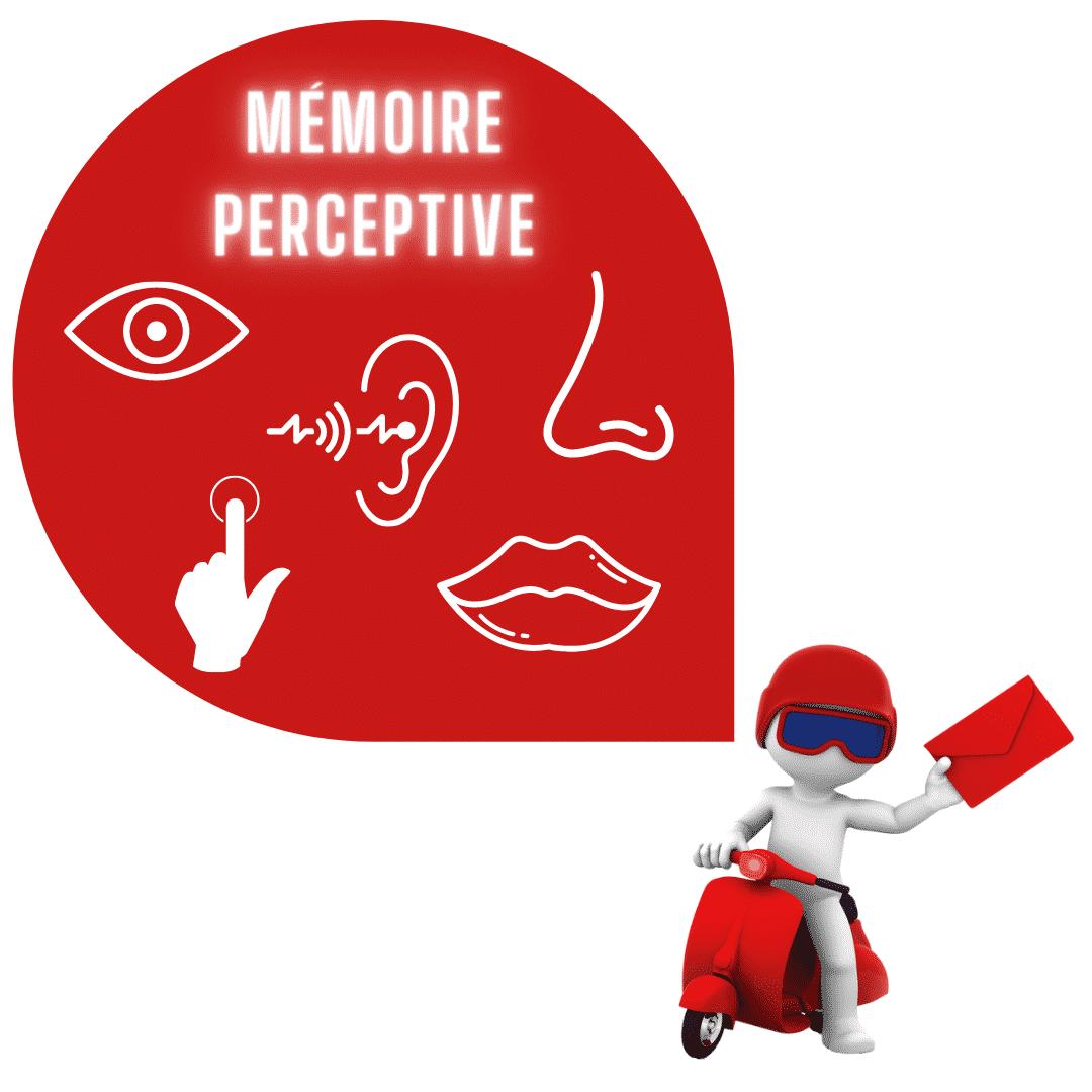 mémoire perceptive